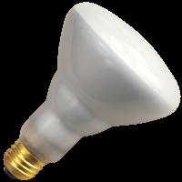 BR40FL120/5/CS 404065 120W BR40 FL 130V LED Lamp